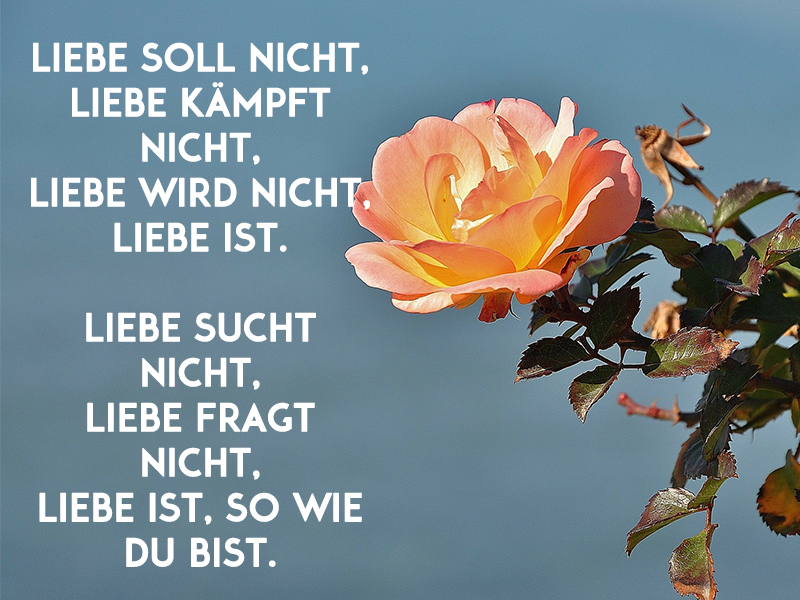 Pin Sprüche Sprüche Zur Hochzeit Eine Gute Ehe Ist Wie Ein on ...